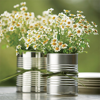 Las margaritas, unas flores sencillas y de gran belleza