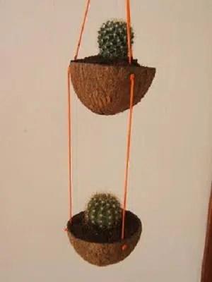 Unos vistosos maceteros hechos con cáscara de coco