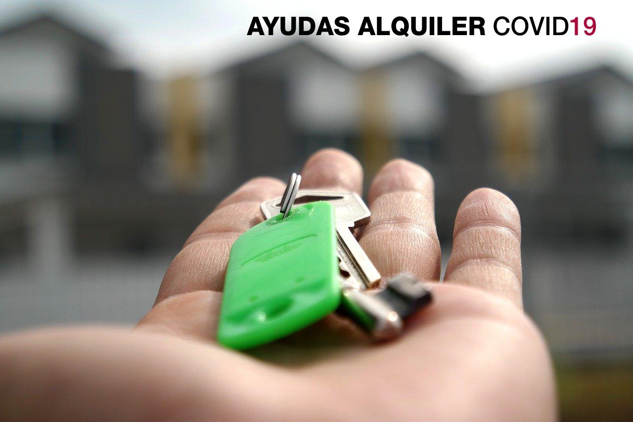 El 8 de julio se abre la convocatoria de ayudas para contribuir a minimizar el impacto económico y social de la COVID-19 en los alquileres de la vivienda habitual