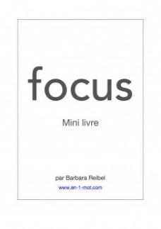 Mini livre focus leo babauta