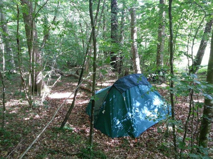 Camping sauvage forêt Suède Quechua Forclaz 3
