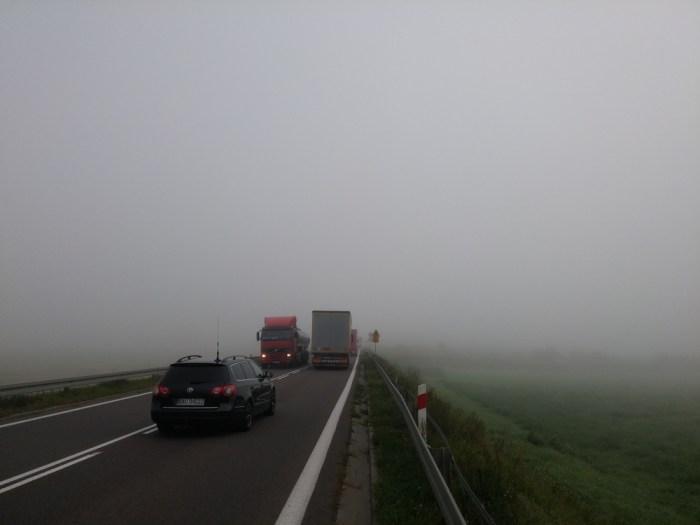 épais brouillard sur la route