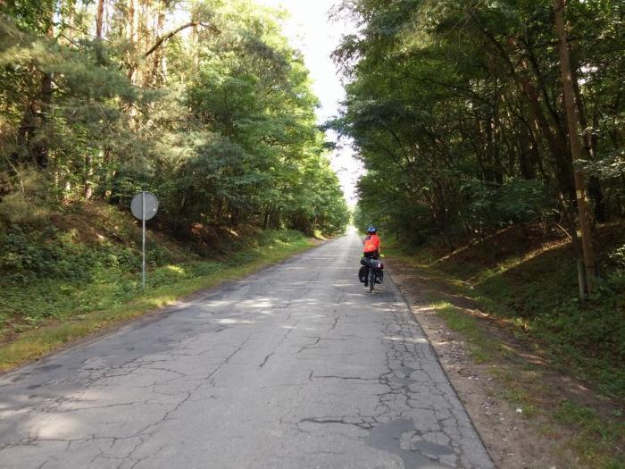 Route de forêt polonaise