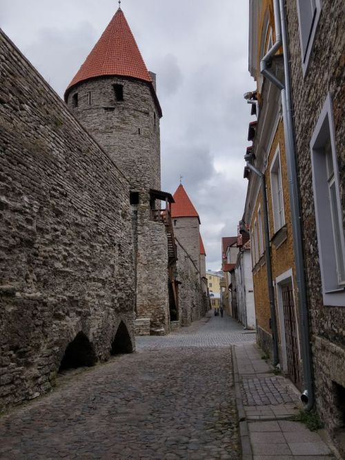 Les murs de Tallinn