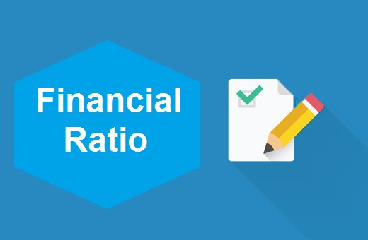 Definition of Financial Ratio