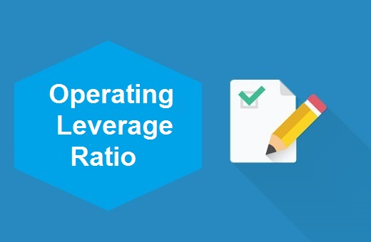 Definition of Operating Leverage Ratio