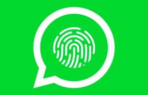 Podrás proteger tus mensajes de WhatsApp con tu huella