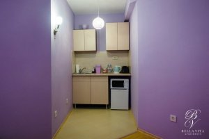 Kitchenette in Fully Equipped Apartment for Rent in Blagoevgrad Bulgaria Budapest