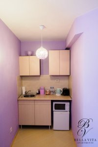 Kitchenette with Microwave, Toaster and Kettle in Apartment for Rent in Blagoevgrad Bulgaria