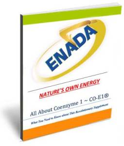 Energy-Ebook-Cover