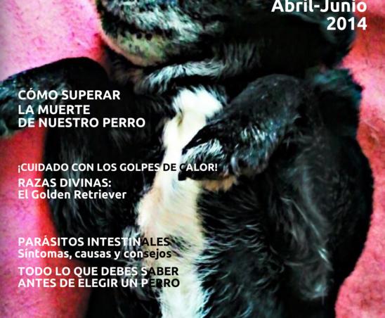 revista canina