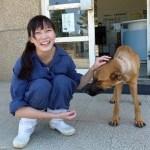 veterinaria se suicida