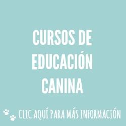CURSOS DE EDUCACIÓN CANINA
