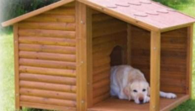 Construir Una Caseta Para El Perro