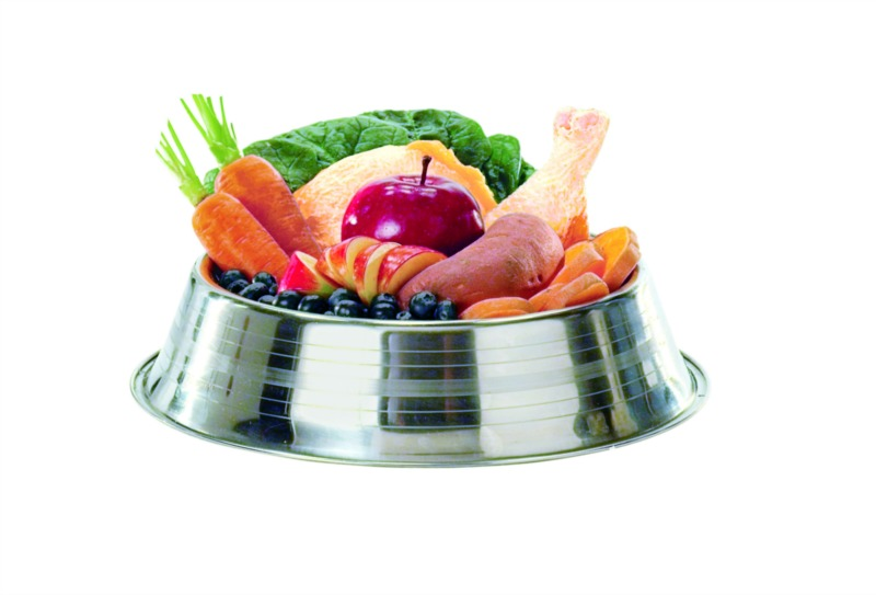 alimento deshidratado para perros