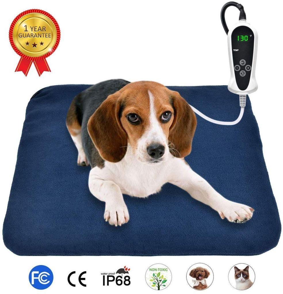 gadgets para mascotas