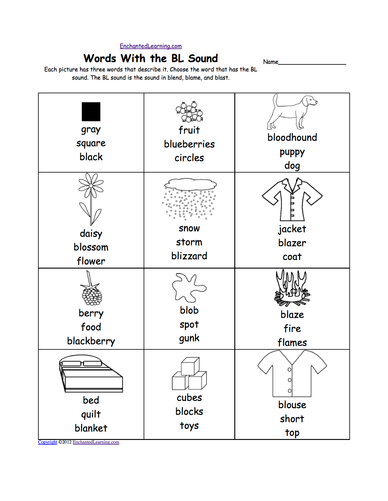 Kindergarten Plants Worksheets