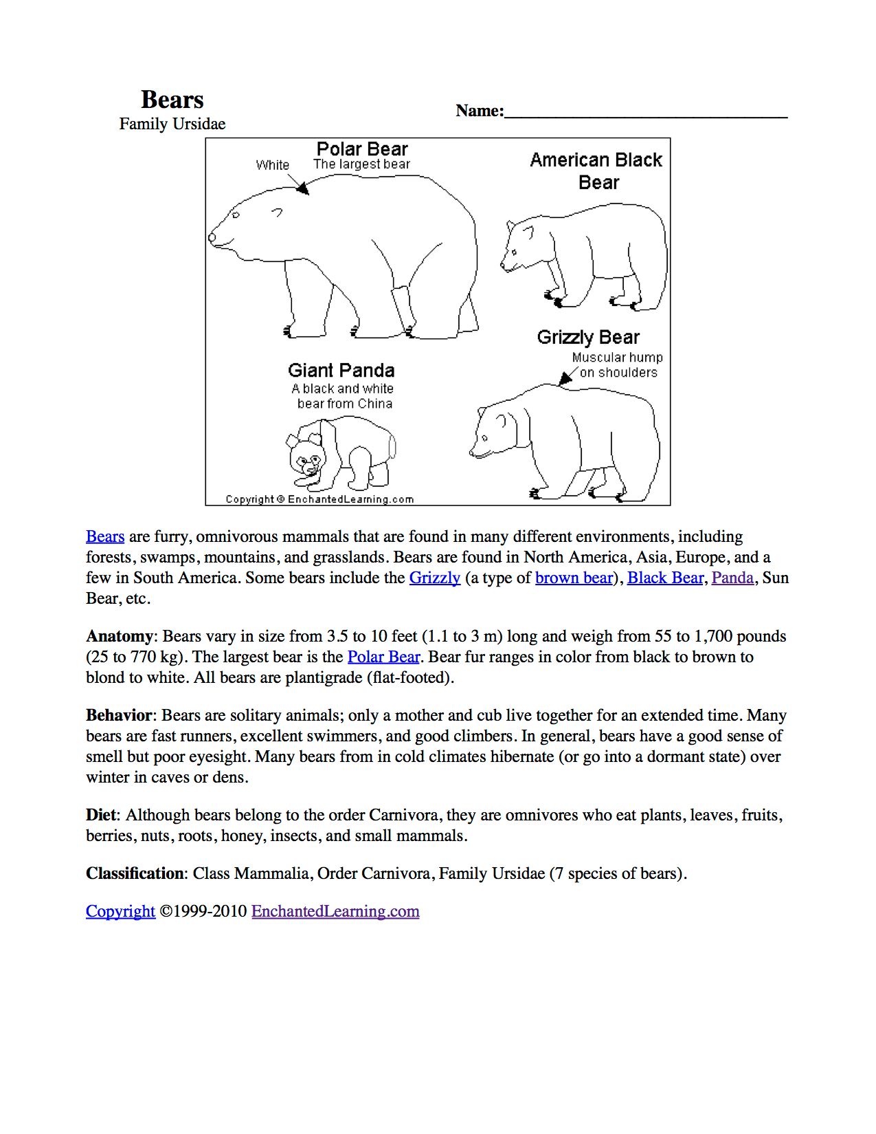 Search Results For Polar Bears Worksheet Calendar