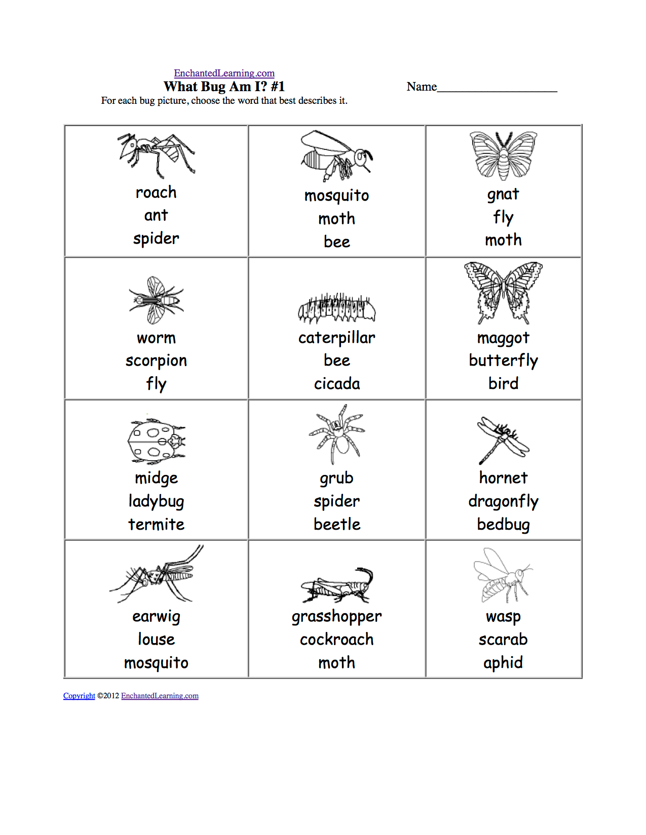 Animals Multiple Choice Spelling Words At