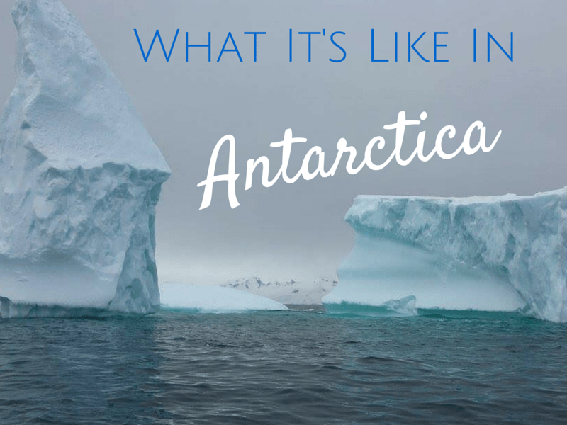 This Is What It's Like To Travel To Antarctica