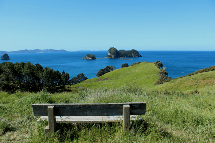 Cathedral Cove Overlook
