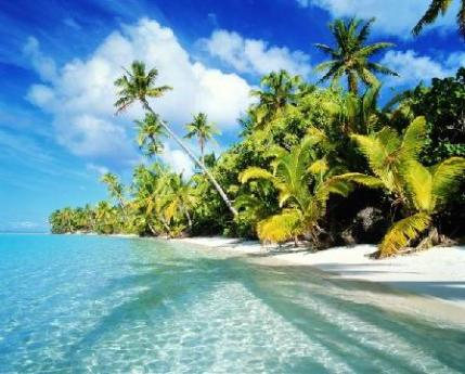 Caribbean-Coast-in-Costa-Rica.jpg (448×360)