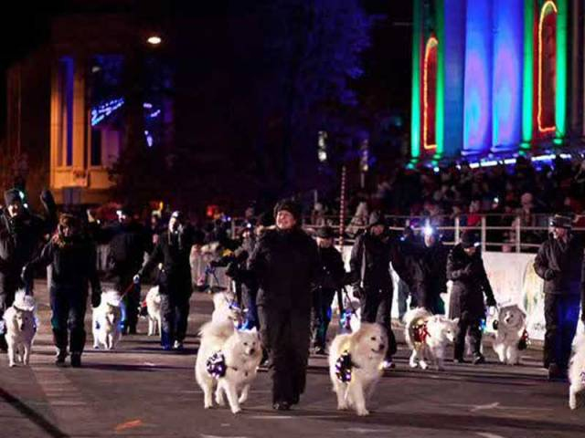 Samoyed Halloween Parade di Food Festival Pakuwon City
