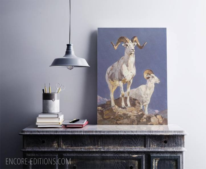 Carl Rungius poster prints, Dall Sheep