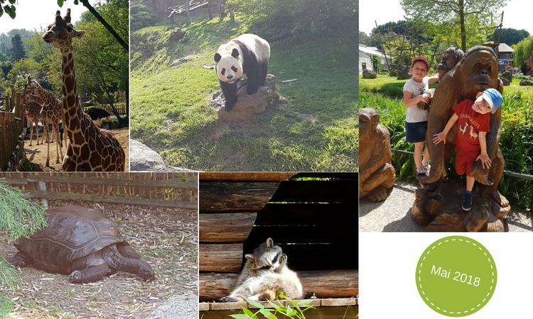 Photos du Zoos de Beauval- Encore une Maman