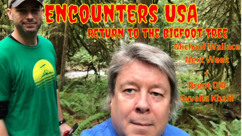 Bigfoot Tree Updates Are They Really Just Cold Feet & Old Info