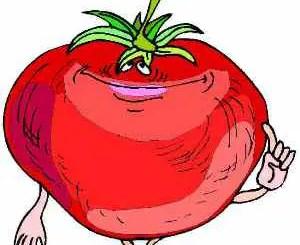 La amargura del tomate