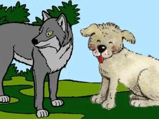 Los lobos y los perros alistándose para luchar