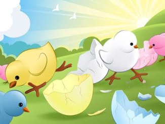 pollitos animados