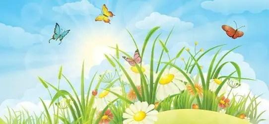Cuentos de mariposas