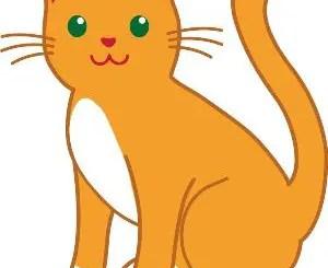 Poesías cortas de gatos para niños