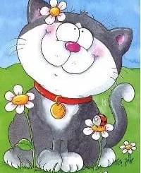 Poesías de gatos para niños