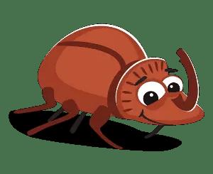 Cuentos infantiles sobre escarabajos
