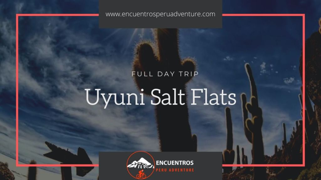 Uyuni Salt Flats Day Tour