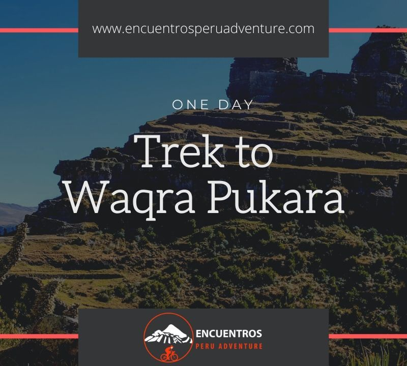Waqrapukara Trek