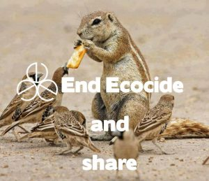 EndEcocide and Share