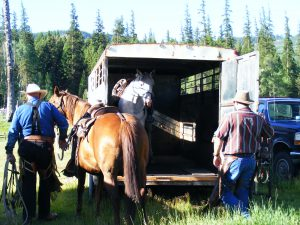 here the men are loading into a trailer to take their horses and dogs a little closer to the cattle