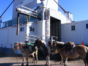 grain elevator in Deer Lodge