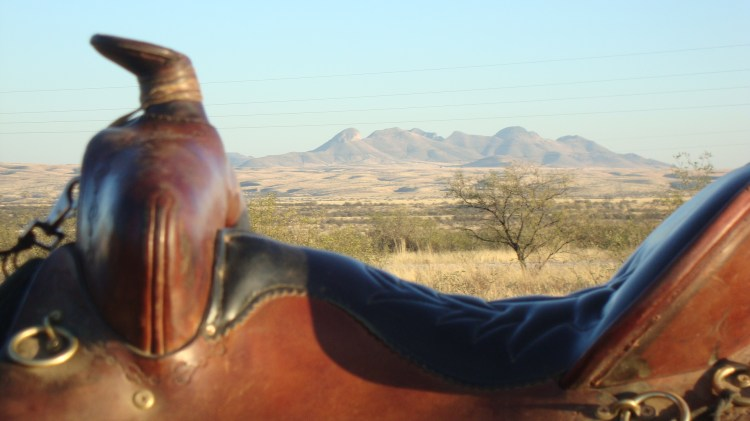 My Black Mountain Saddle from Tucker taking in the view.