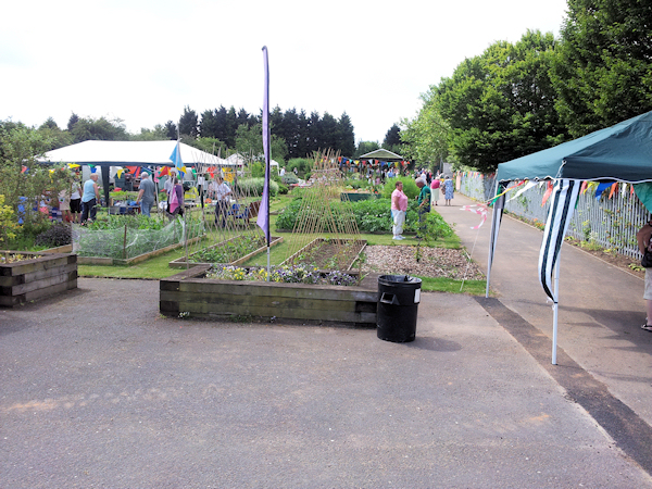 APTG view down allotment open day 2015-2