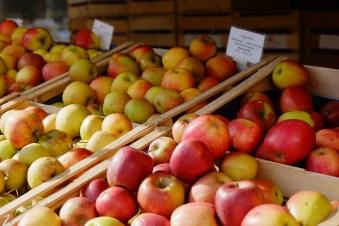 Äpfel auf dem Viktualienmarkt