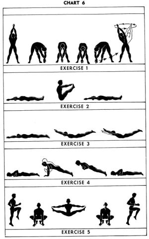 5BX Exercises: Chart 6