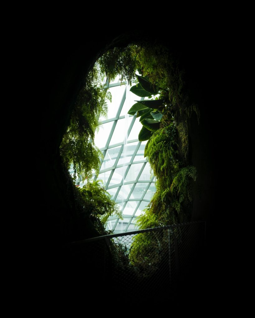 Greenhouse in strategic location