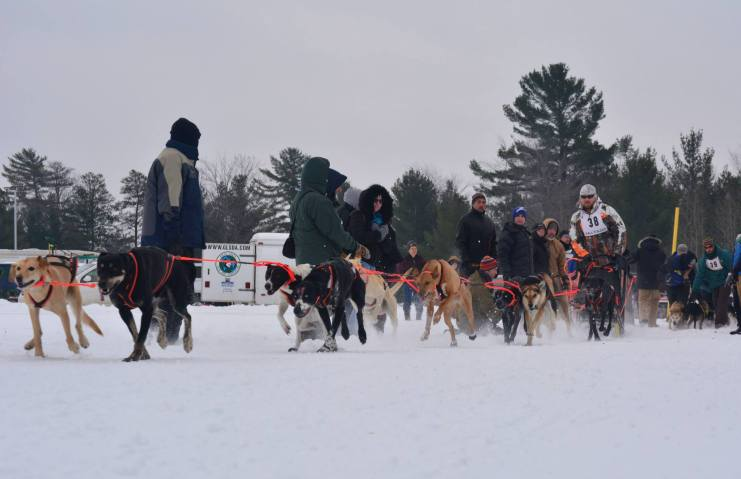 Kalkaska Winterfest 2015 - Photo by Kaitlyn Tidwell