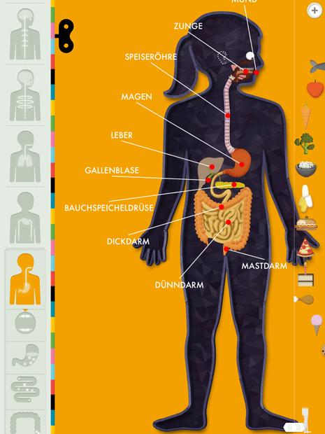 Lern App über Anatomie für ältere Kinder