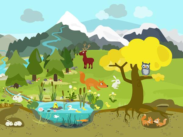 Niedliche Wimmelbuch App über Ökosysteme, Tiere und Biologie